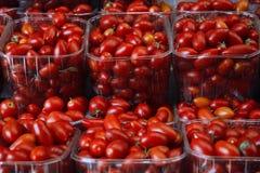 Tomates rojos frescos en cesta Foto de archivo libre de regalías