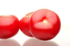 Tomates rojos frescos en un fondo blanco Fotos de archivo