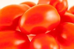 Tomates rojos frescos presentados en el fondo blanco Fotografía de archivo