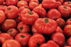 Tomates rojos grandes horizontales Imagenes de archivo