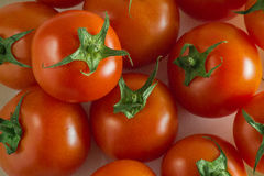 Tomates rojos grandes para el fondo Fotos de archivo