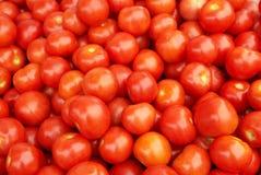 Tomates rojos jugosos foto de archivo libre de regalías
