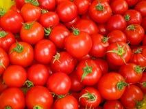 Tomates rojos maduros Imagen de archivo