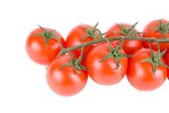 Tomates rojos maduros fotos de archivo