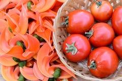 Tomates rojos maduros Foto de archivo libre de regalías