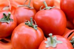 Tomates rojos maduros Foto de archivo