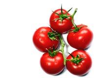 Tomates rojos vibrantes en la vid fotos de archivo