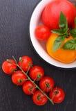 Tomates rojos y amarillos Fotografía de archivo