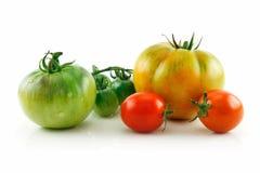 Tomates rojos y amarillos mojados maduros aislados en blanco Imagen de archivo