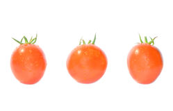 Tomates rouges. Images stock