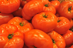 Tomates rouges Photographie stock