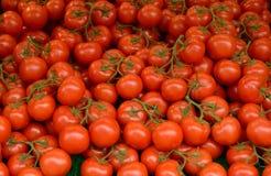 Tomates rouges Images libres de droits