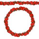 Tomates rouges Brosse sans fin de modèle, guirlande ronde Cadre de guirlande ou de cercle Logo de ketchup ou salade de légume Déf Image stock