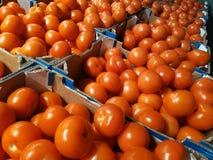 Tomates rouges dans des boîtes en carton image stock