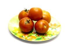 Tomates rouges de plaque Image libre de droits