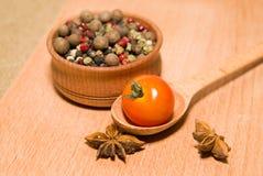 Tomates rouges en anis de cuillère, de poivre et d'étoile Image stock