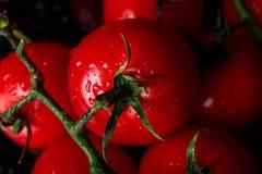 Tomates rouges en gros plan Tomates complètement des vitamines sur un fond noir Tomates-cerises juteuses Image stock