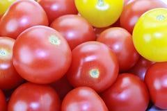 Tomates rouges et jaunes de cocktail d'isolement sur le blanc Photo libre de droits