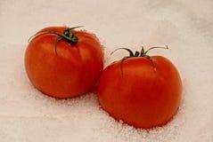 Tomates rouges et mûres dans la neige Photos stock