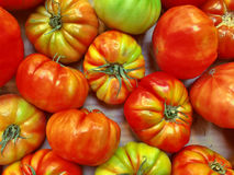 Tomates rouges et vertes photos stock