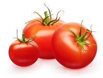 Tomates rouges fraîches entières et petite cerise avec les feuilles vertes Photo libre de droits