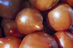 Tomates rouges fraîches et mûres image stock