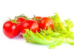 Tomates rouges fraîches et mûres sur l'une brosse et feuilles des frillis de salade Photographie stock libre de droits