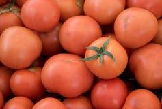 Tomates rouges fraîches sur un marché de fruit photo stock