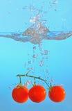 Tomates rouges jetées dans l'eau claire Images libres de droits