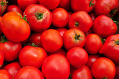 Tomates rouges mûres Image libre de droits