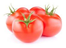 Tomates rouges mûres d'isolement sur un blanc Photo libre de droits