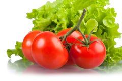 Tomates rouges mûres et lames vertes de salade. Photographie stock