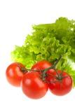 Tomates rouges mûres et lames vertes de salade. Images stock