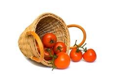 Tomates rouges mûres et un panier d'isolement en fonction Photographie stock
