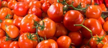 Tomates rouges mûres fraîches dans un marke Image stock