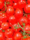 Tomates rouges organiques images stock