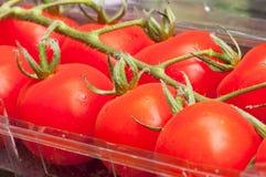 Tomates rouges organiques saines Images libres de droits