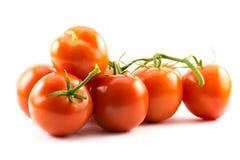 Tomates rouges sur un fond blanc photos stock