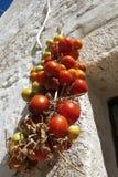 Tomates sèches au soleil Photo stock