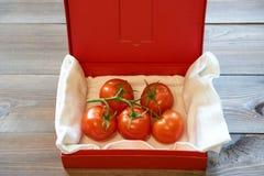 Tomates saborosos em um ramo na caixa do vermelho do cartão Fotografia de Stock Royalty Free