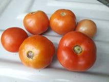 Tomates saines et nourriture végétale photographie stock