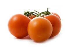Tomates savoureuses Photos libres de droits