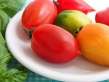 tomates savoureuses Images stock