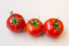 Tomates suculentos Fotografia de Stock Royalty Free