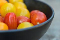Tomates suculentos frescos da herança no ajuste rústico fotos de stock