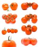 Tomates suculentos frescos em um fundo branco Imagem de Stock