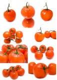 Tomates suculentos frescos em um fundo branco Fotos de Stock