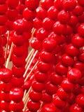 Tomates sur des bâtons Images stock