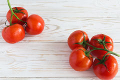 Tomates sur la vigne Images stock