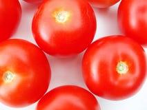 Tomates sur le fond blanc Photos stock